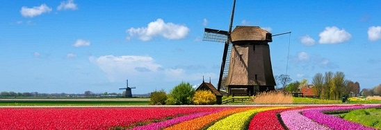 FLASH SALE: 15% off day sailings to Holland this month